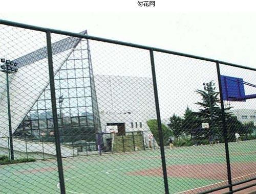 供应镀锌勾花网 pvc包塑菱形网 不锈钢勾花网 勾花围栏网
