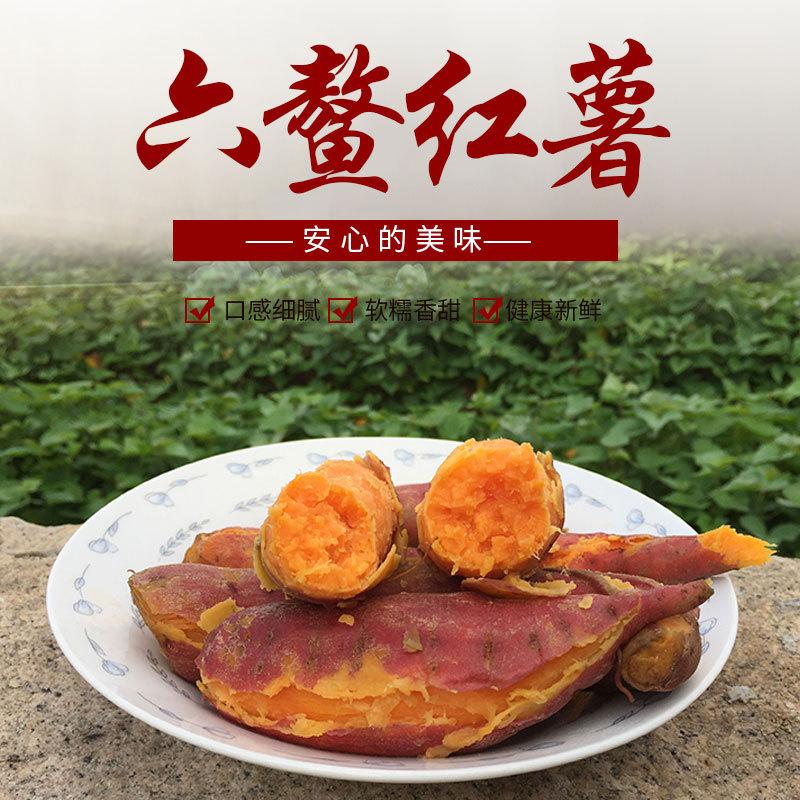 六鳌红蜜薯精品果5斤装 番薯红心农家板栗山芋红皮沙地地瓜批发